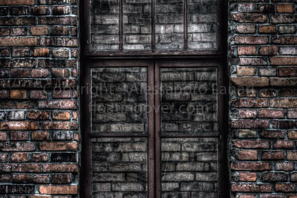 The Closed Window - Auschwitz